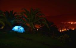 Campingzelt in der Nacht unter palmtrees Lizenzfreies Stockbild
