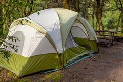 Campingzelt im alten Wachstum Forest Area Lizenzfreies Stockbild