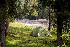 Campingzelt im Holz während einer wandernden Reise zu Österreich-Natur stockbild