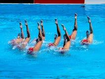 Campionato 2009 del mondo di FINA Fotografia Stock Libera da Diritti