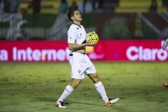 Campionato brasiliano fotografie stock