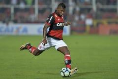 Campionato brasiliano 2017 Fotografie Stock Libere da Diritti