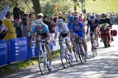 Campionato del mondo della corsa di strada di UCI per gli uomini dell'elite sopra Fotografie Stock