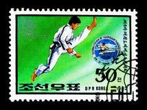 Campionato del Taekwondo, ottavo campionato del Taekwondo del mondo, serie del mondo di Pyongyang, circa 1992 Immagine Stock Libera da Diritti