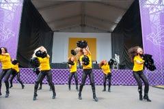 Campionato di baseball da Renault Fotografie Stock Libere da Diritti