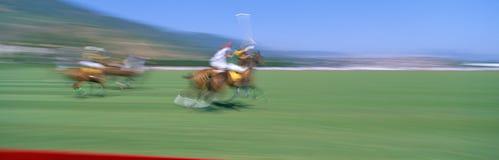 Campionato di polo del mondo Fotografie Stock Libere da Diritti