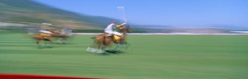 1998 campionato di polo del mondo, polo di Santa Barbara e randello di racchetta La Gran-Bretagna v Il Brasile, agosto 21, 1998,  Immagini Stock Libere da Diritti