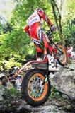 Campionato di prova 2008 del mondo - Tolmezzo Fotografia Stock