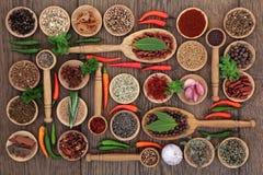 Campionatore dell'alimento della spezia e dell'erba Fotografia Stock Libera da Diritti