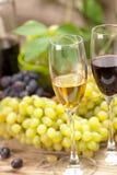 Campionatura del vino Fotografie Stock Libere da Diritti