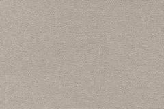 Campione beige di carta pastello di struttura dei cereali a grana grossa dell'artista fotografia stock libera da diritti