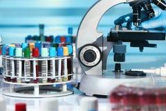 Campione d'esame del tecnico di sangue nel microscopio nella La immagine stock libera da diritti
