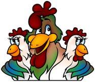 Campione del gallo royalty illustrazione gratis