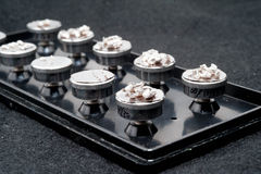 Campione del microscopio elettronico a scansione Fotografie Stock