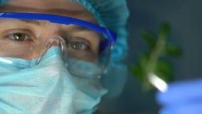 Campione di pianta della tenuta del biologo in forcipe, esperimento crescente genetico in laboratorio video d archivio