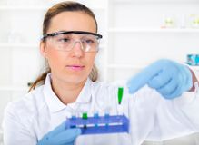 Campione di prova della donna del chimico di liquido dentro Fotografia Stock Libera da Diritti