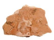 Campione naturale della roccia della marna di marlstone su fondo bianco Fotografie Stock