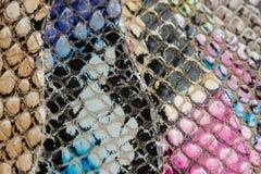 Campioni colorati di cuoio genuino in colori differenti Strutturi il primo piano, impresso sotto il rettile della pelle Immagine Stock