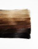 Campioni dei capelli dei colori differenti di pendenza Fotografia Stock