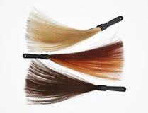 Campioni dei capelli su bianco Fotografia Stock