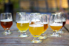 Campioni della birra del mestiere in vetri all'aperto fotografia stock libera da diritti