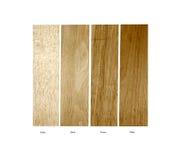 Campioni di legno della balsa, della betulla, del pecan e dell'ontano Immagini Stock Libere da Diritti