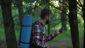 Campista que busca para la señal del teléfono móvil después de perdido en bosque, mala conexión almacen de video