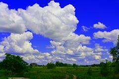 Campo, árbol, nubes en el cielo azul Foto de archivo