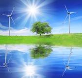 Campo, árvore e céu azul com turbinas eólicas Imagens de Stock