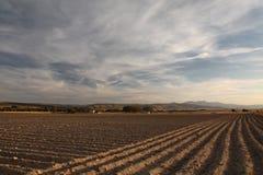 Campo Fotografia de Stock