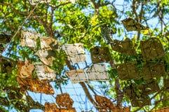 Campo abstracto Fotos de archivo libres de regalías