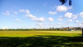 Campo agrícola Fotografía de archivo libre de regalías