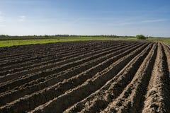 Campo agrícola arado Ajardine com a terra agrícola, recentemente arada e preparada para a colheita no dia ensolarado com Fotografia de Stock Royalty Free