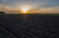 Campo agrícola arado Ajardine com a terra agrícola, recentemente arada e preparada para a colheita no por do sol Imagens de Stock Royalty Free