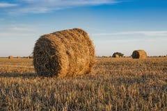 Campo agrícola com pacotes da palha Fotos de Stock Royalty Free