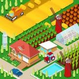 Campo agrícola de la granja rural isométrica con el invernadero y el molino de viento Imagen de archivo
