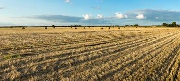Campo agrícola del heno con las balas Luz de la puesta del sol y cielo azul Visión panorámica Imagen de archivo libre de regalías