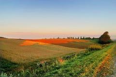 Campo agrícola del otoño Fotografía de archivo libre de regalías