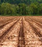 Campo agrícola listo para plantar Imágenes de archivo libres de regalías