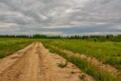 Campo agrícola plantado con las patatas Formado por el techniq Imagen de archivo