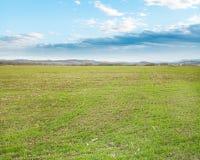 Campo agricolo con erba verde nella sera in anticipo della molla Fotografie Stock Libere da Diritti