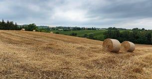 Campo agricolo con le balle della paglia dopo il raccolto Fotografie Stock Libere da Diritti