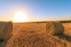 Campo agricolo dopo la raccolta del grano Il sole è giù fra i mucchi di fieno rotondi Immagini Stock