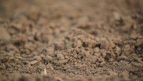 Campo agricolo, suolo del terreno arabile in primavera pronto per la stagione della semina stock footage