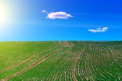 Campo agricolo verde con cielo blu, la luce del sole e le nuvole su fondo fotografia stock