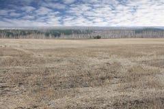 Campo agricultural de inclinação Fotos de Stock Royalty Free