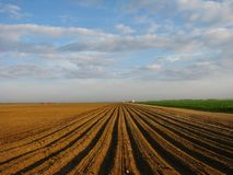 Campo agricultural Ploughed Imagem de Stock Royalty Free