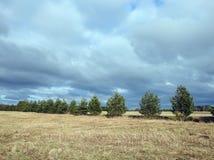 Campo, alberi e bello cielo nuvoloso, Lituania Fotografie Stock Libere da Diritti