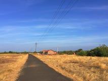 Campo amarelo e céu azul, estrada no campo indiano, curso pela bicicleta Fotos de Stock Royalty Free