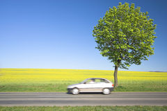 Campo amarillo con un coche rápido. fotografía de archivo